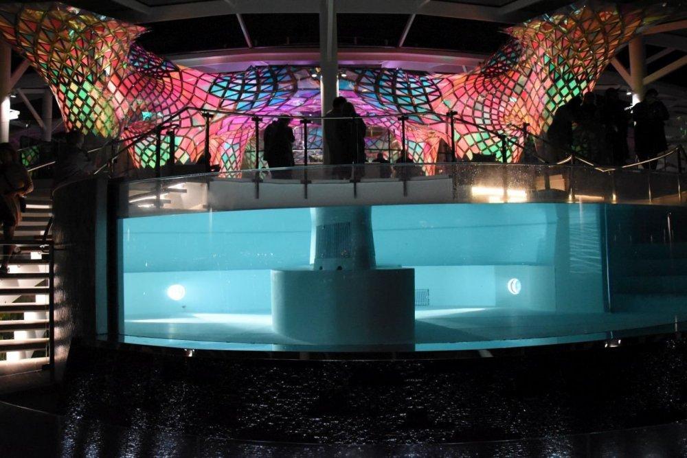 Solarium Pool.jpg