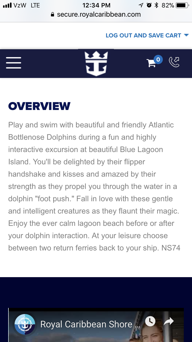 Nassau Bahamas Dolphin Excursion Shore Excursions Royal