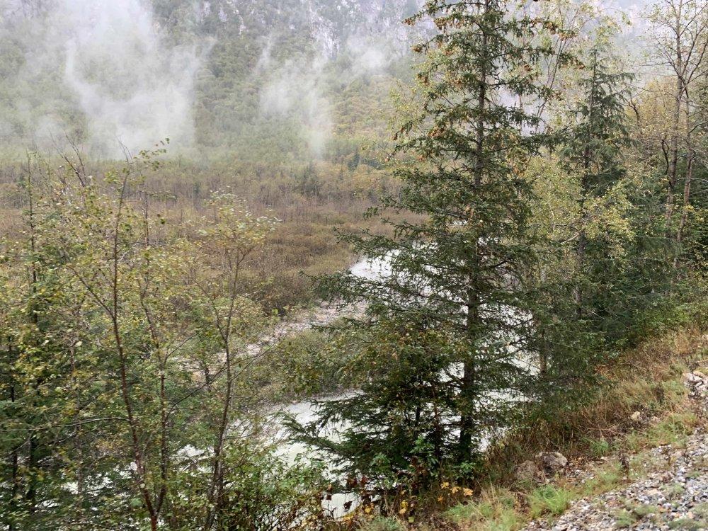 Stream and scenery.jpg