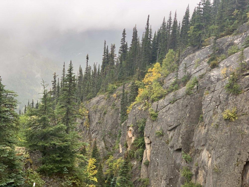 1932218261_Mountainside7.thumb.jpg.e76a151541acedf1086f1671adba8dd6.jpg