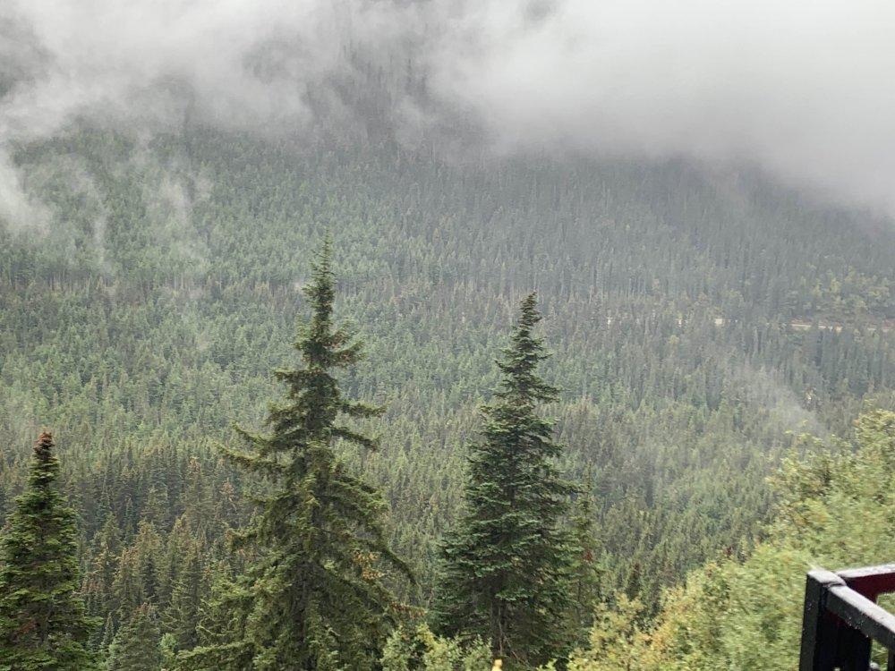 mountainside5.jpg