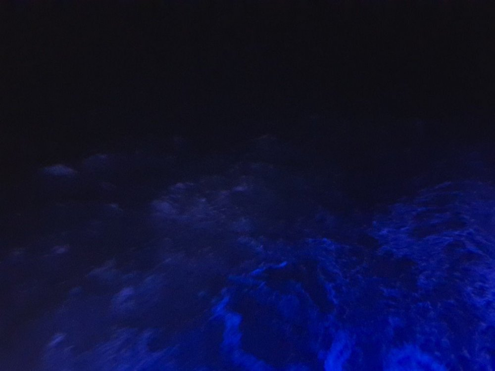 sea.thumb.jpg.c2fdc8039e0c497c6a9b1a57e37bce0e.jpg