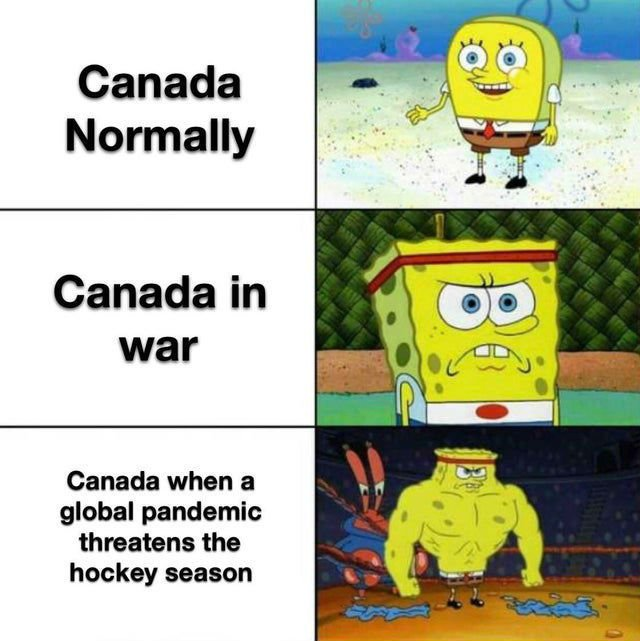 canadian-corona-virus-meme.jpg.8ca09a309e2ab94b6d9faee69693524d.jpg