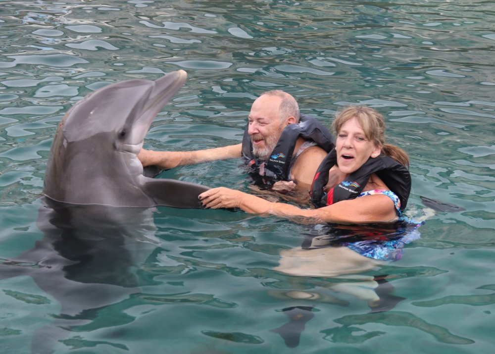 Dolphin Quest Photos-BERMUDA-Dolphin Dip-id240776226_withBorder.jpg