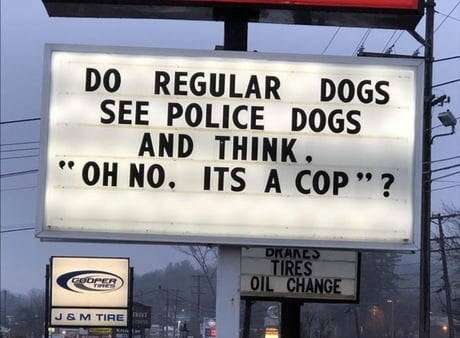 funny-sign-that-reads-do-regular-dogs-see-police-dogs-and-think-oh-no-its-a-cop.jpg