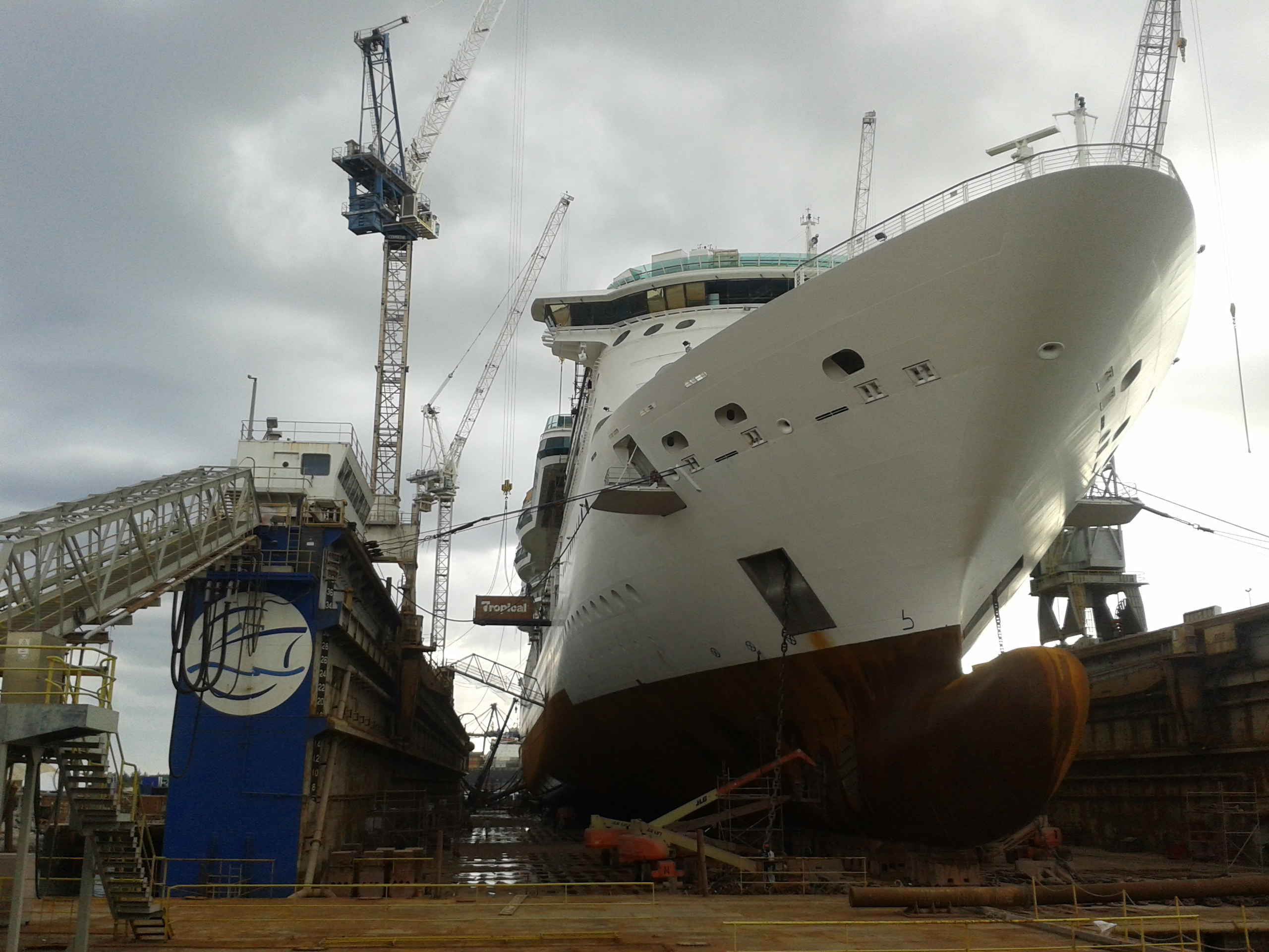 Photos From Jewel Of The Seas Refurbishment Royal