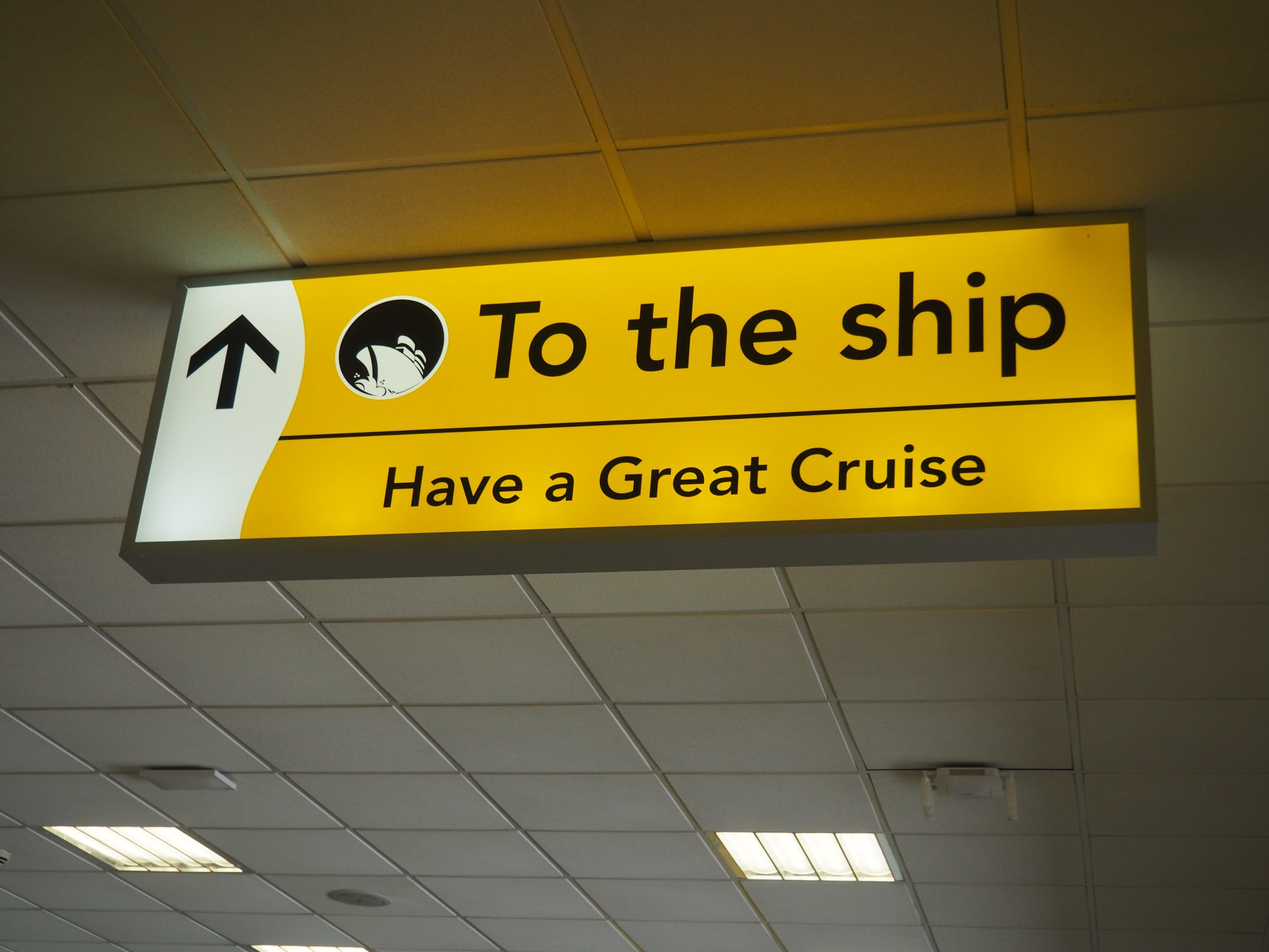 Royal Caribbean Cruises LTD (NYSE:RCL) Quarterly Sentiment Report