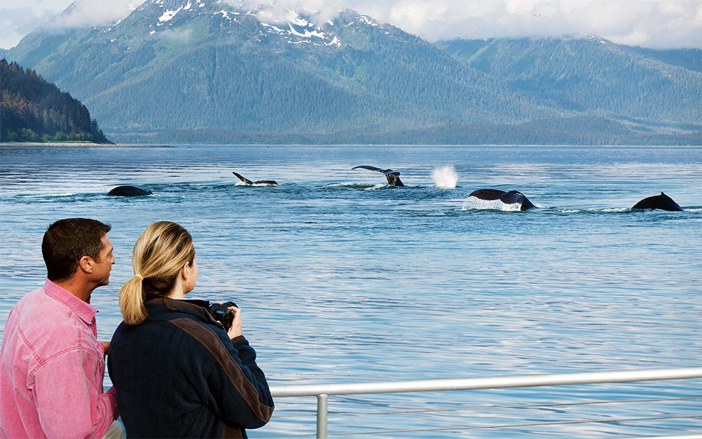 Royal Caribbean Announces Alaska Sailings Royal - Cruise from seattle to alaska